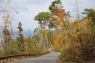Photograph - Road Thru Changing Seasons by Karol Livote