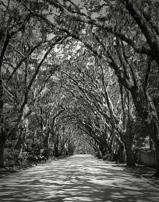 Photograph - Road To Somewhere by Perry Correll