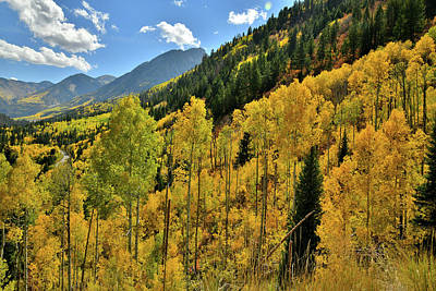 Photograph - Roadside Fall Colors While Ascending To Mcclure Pass by Ray Mathis