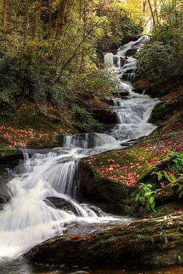 Photograph - Roaring Fork Creek Falls IIi by Carol Montoya