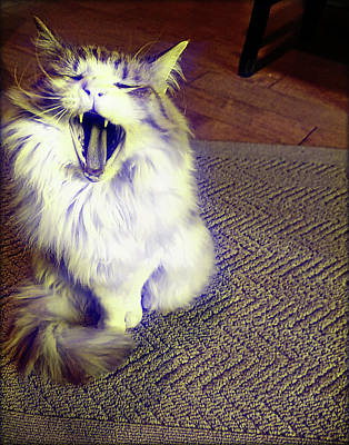 Photograph - Roaring Ron by JAMART Photography