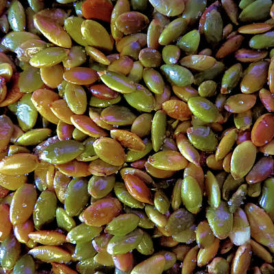 Jodi Diliberto Royalty-Free and Rights-Managed Images - Roasted Pumpkin Seeds by Jodi DiLiberto