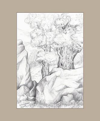 Drawing - Rock And Trees by Ruth Renshaw