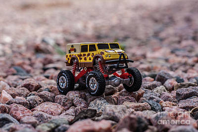 Photograph - Rock Crawler by Tony Baca