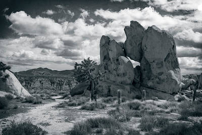 Photograph - Rock Formation by Sandra Selle Rodriguez