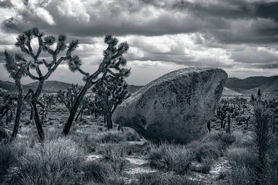 Photograph - Rock From The Sky? by Sandra Selle Rodriguez