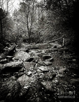 Photograph - Rock Glen by RicharD Murphy