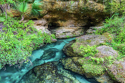 Photograph - Rock Springs Spring Head by Stefan Mazzola