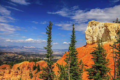Photograph - Rock With A View by Dawn Richards