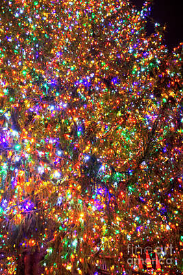 Photograph - Rockefeller Center Christmas Tree Lights by John Rizzuto