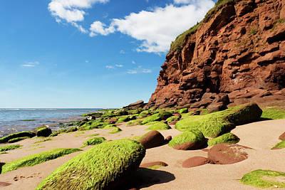 Photograph - Rocky Coast by Arsenik
