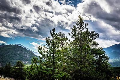 Rusty Trucks - Rocky Mountain Pines by James L Bartlett