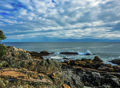 Photograph - Rocky Ocean Coast In Acadia National Park by Dan Sproul