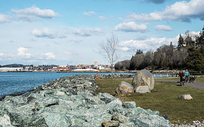 Photograph - Rocky Shore At Boulevard Park by Tom Cochran