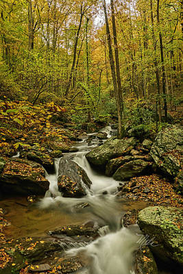Photograph - Rocky Stream Vertical by Meta Gatschenberger