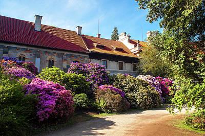 Photograph - Romantic Chapel With Azalea Blooms by Jenny Rainbow