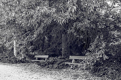 Photograph - Romantic Corner In Autumn Time. Monochrome by Jenny Rainbow