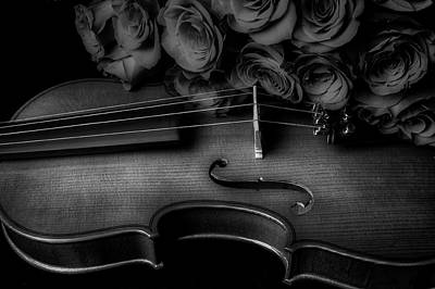 Photograph - Romantic Red Roses And Violin In Black And White by Garry Gay