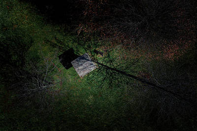 Photograph - Roof In The Trees by Nick Smith