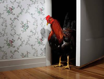 Photograph - Rooster Entering Bedroom Doorway by Jan Stromme