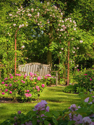 Photograph - Rose Arbor by Mark Mille