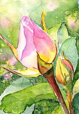 Painting - Rose Buds In The Garden by CarlinArt Watercolor