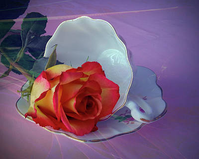 Photograph - Rose, Cup And Saucer by Phyllis Holler