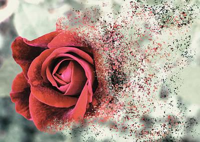 Digital Art - Rose Disbursement by Jason Fink