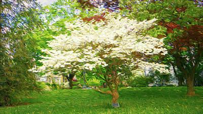Digital Art - Rose Gardens White Dogwood Tree by Jason Fink