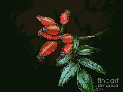 Painting - Rose Hip by Go Van Kampen