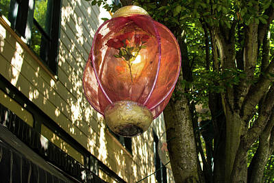 Photograph - Rose Lantern In Olympia by Tom Cochran
