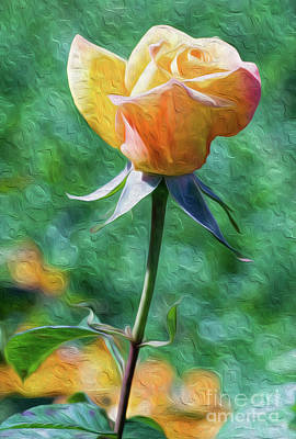 Digital Art - Rose Prominence II by Kenneth Montgomery