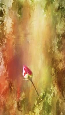 Photograph - Rosebud by Marilyn Wilson