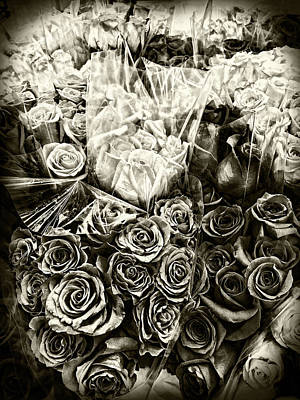 Photograph - Roses In Sepia by Sharon Popek