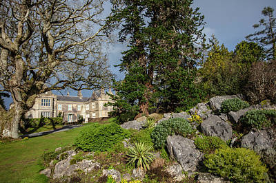 Photograph - Ross Castle Through The Trees Killarney National Park  by John McGraw