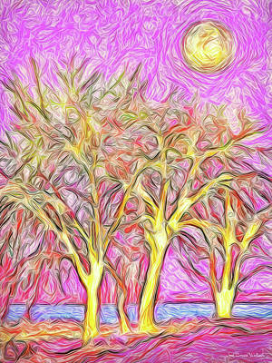 Digital Art - Rosy Hued Trees - Boulder County Colorado by Joel Bruce Wallach