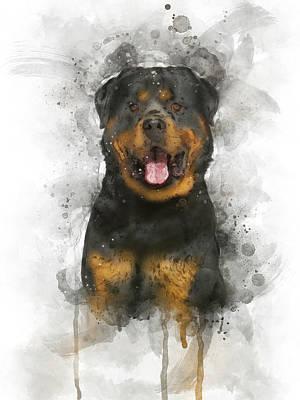 Watercolor Pet Portraits Digital Art - Rottweiler by Aged Pixel