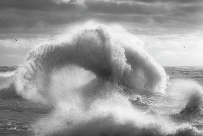 Photograph - Rough Sea 16 Black And White by Giovanni Allievi