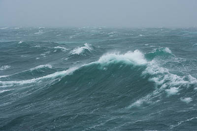 Photograph - Rough Seas Near South Georgia Island by Mint Images - Art Wolfe