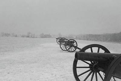 Row Of Cannon Art Print