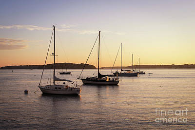 Photograph - Row Of Sailboats  by Michael Ver Sprill