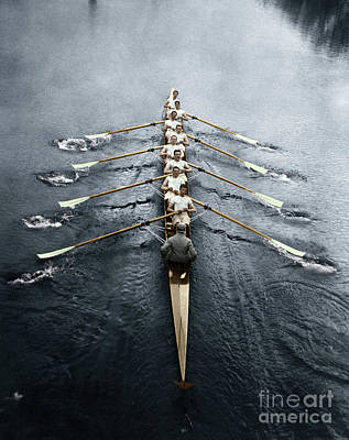 Photograph - Rowing Team by Granger