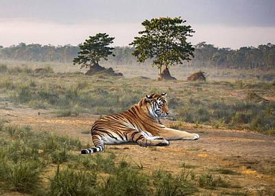 Digital Art - Royal Bengal Tiger Of Nepal by Spadecaller