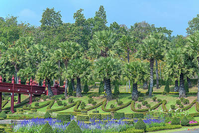 Photograph - Royal Park Rajapruek Gardens Dthcm2614 by Gerry Gantt