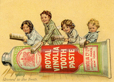 Photograph - Royal Vinolia Toothpaste, 1910s by Heritage Images