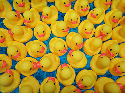 Photograph - Rubber Duck Meet And Greet by Debi Dalio