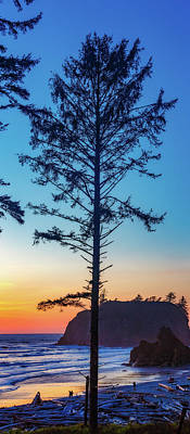 Moody Trees - Ruby Beach Sunset 17 by Mike Penney