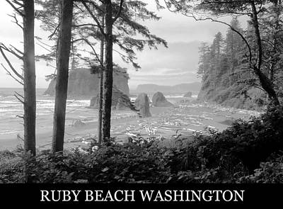 Washington Driftwood Beach Fog Wall Art - Photograph - Ruby Beach Washington Poster A by David Lee Thompson