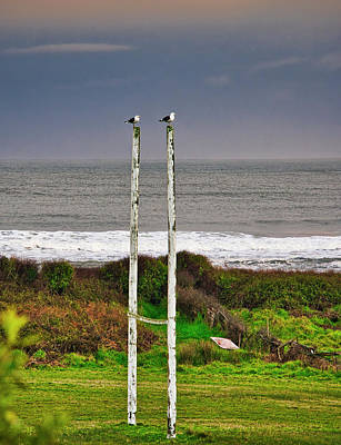 Photograph - Rugby Goal - Hokitika - New Zealand by Steven Ralser