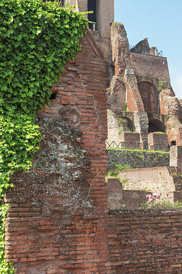 Open Impressionism California Desert - Ruins of brick buildings covered with climbing plants. by Jaroslav Frank